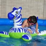 pool-76524_1280